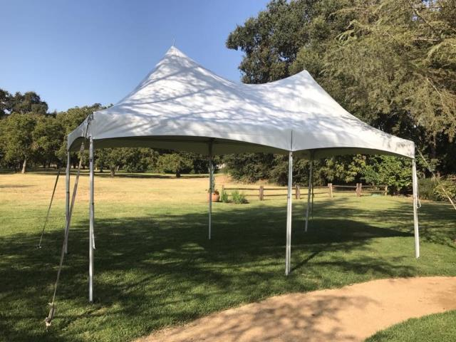 Where to find Tent, 10 X 20  Economy Peak Top in Sacramento