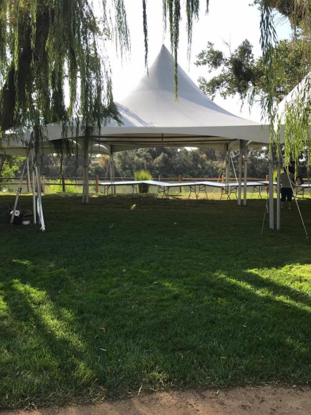 Where to find Tent, Party 20  x 20 in Sacramento