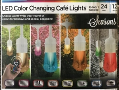 Rental store for Lights, String LED Color Changing 24 -12 in Sacramento CA